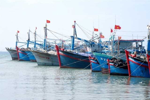 Ninh Thuận focuses on developing offshore fishing