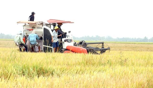 Kiên Giang does not let COVID affect socio–economic development