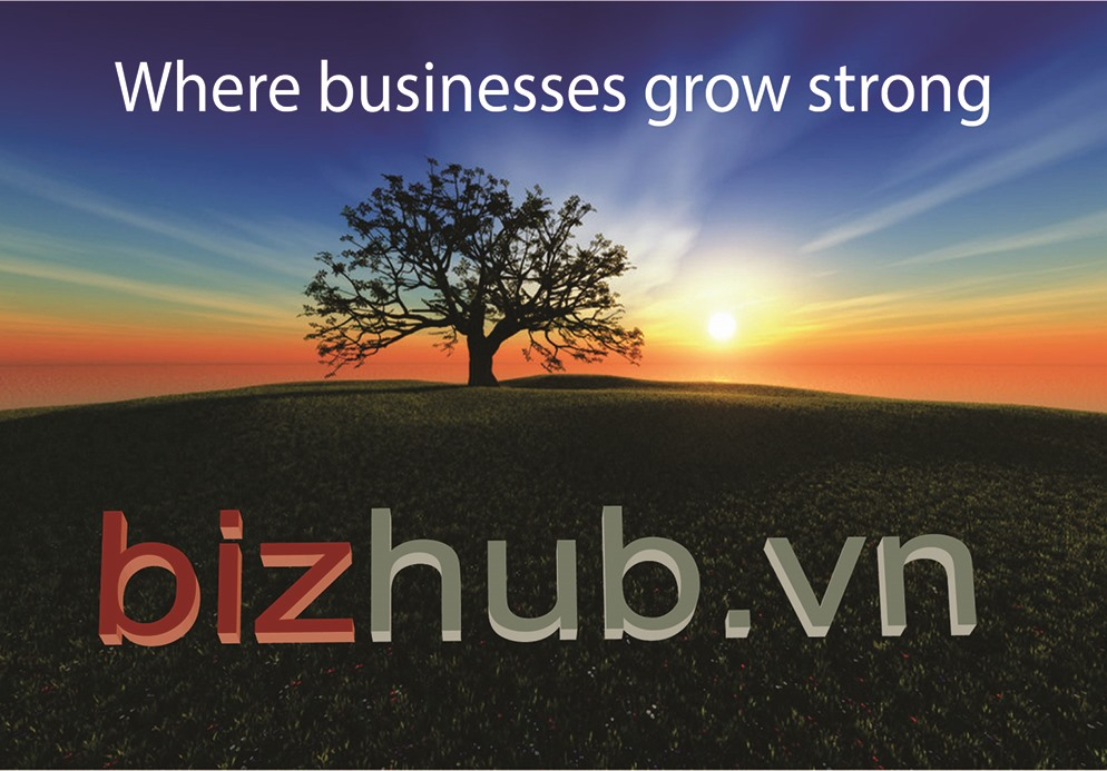 http://bizhub.vn/