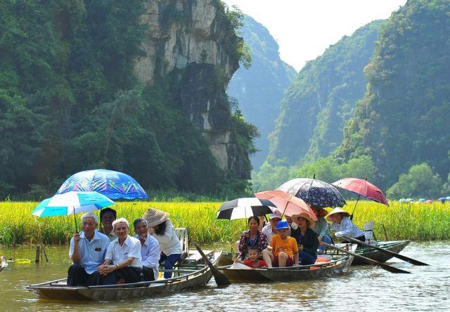 Ninh Bìnhs river of rice