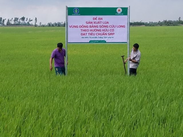 Long An fosters ties between farmers agricultural companies