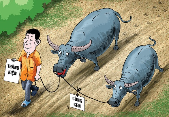 DNA tests for buffaloes