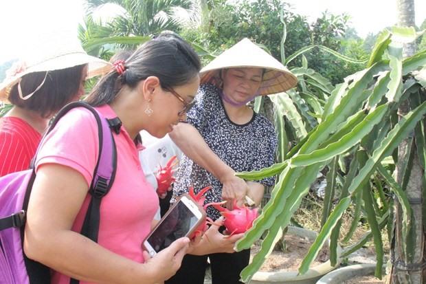 Bình Thuận Province continues to develop eco-tourism