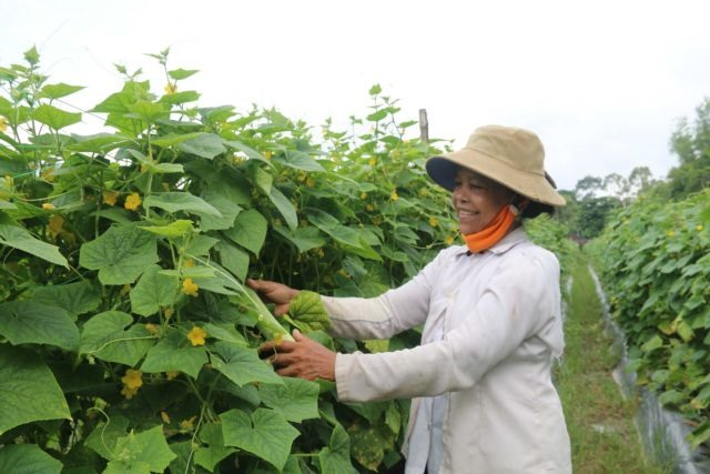 Trà Vinh Provinces poverty alleviation measures yield solid results