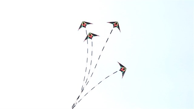 Flying kites in HCM City