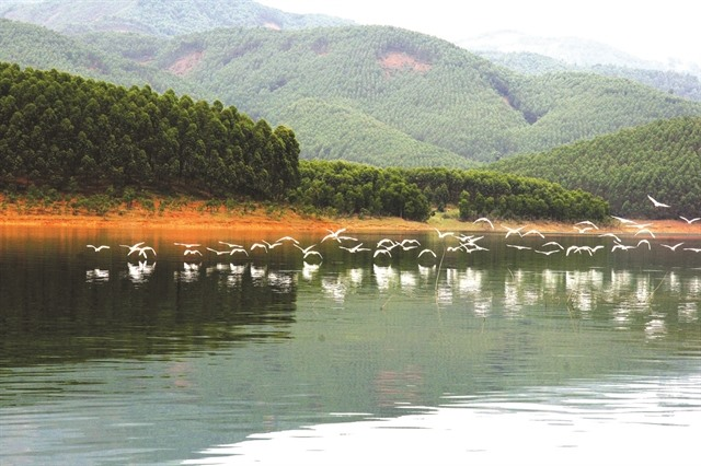Peaceful charm of Thác Bà Lake