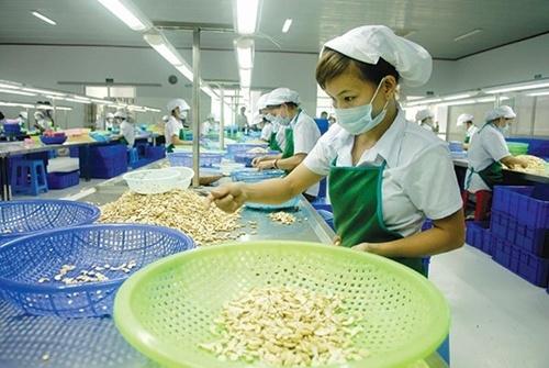 Việt Nam sees enterprise growth