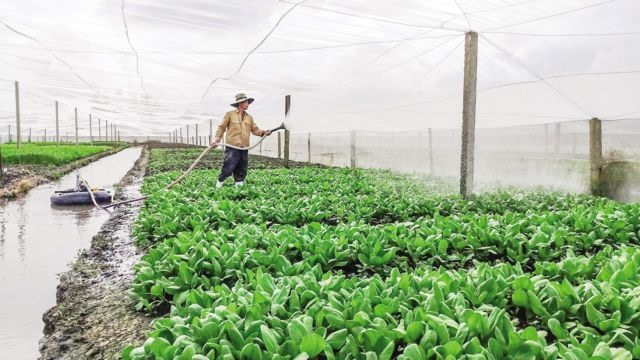 Seminar discusses ways to add value to farm produce