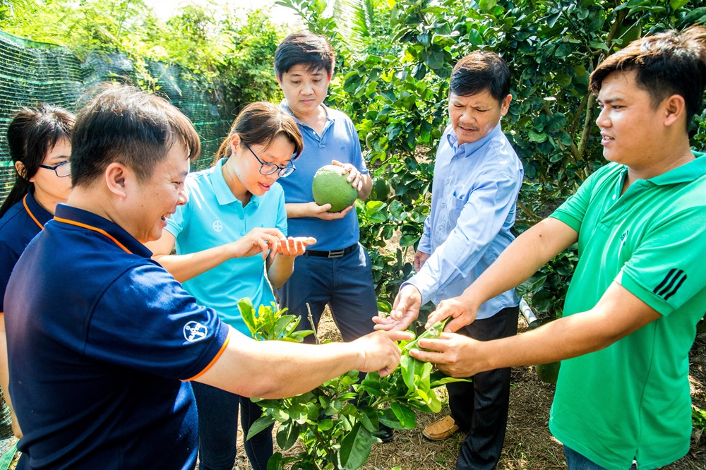 Bayer Agricademy trains fruit coffee farmers