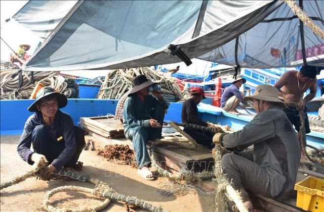 Labour shortage hinders development of offshore fishing in central region