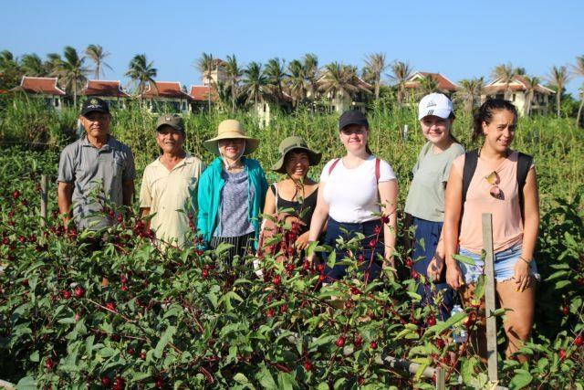 Village fields turn organic