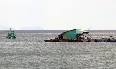 Kiên Giang expands marine aquaculture on industrial scale