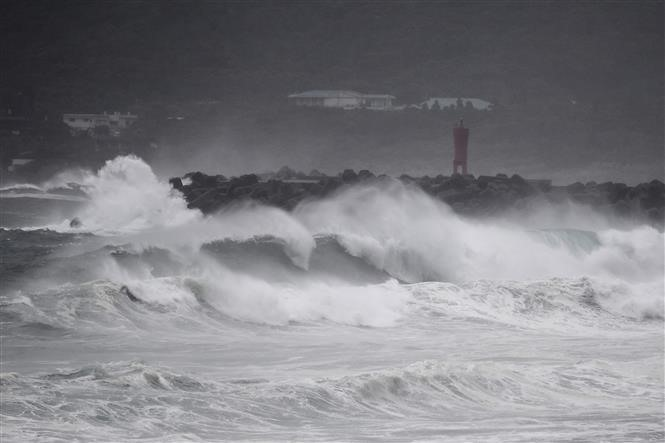 Two Vietnamese missing in Typhoon Haishen