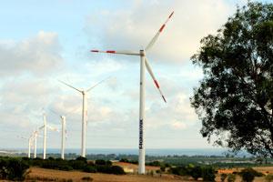 Viet Nam embraces wind power