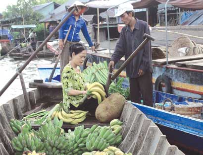 Online dialogue discusses Mekong Delta development