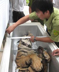 Nation denies WWF claim of negligence