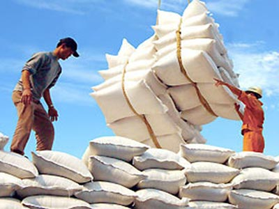 Exports of rice to decrease sharply