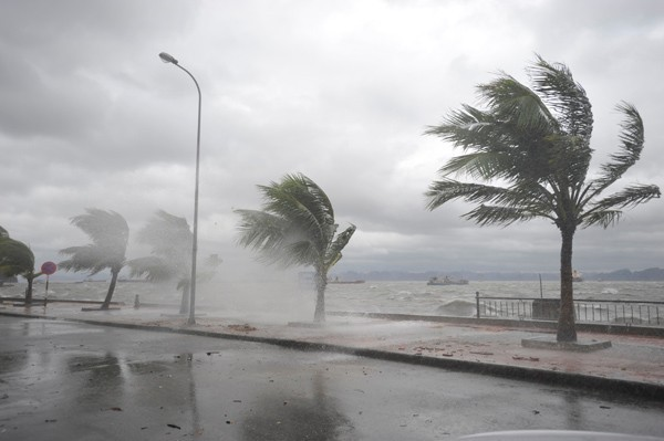Typhoon Haiyan cuts power to Ha Long City