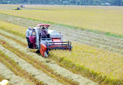Farmers benefit from co-operation