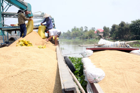 Rice exports need to be streamlined