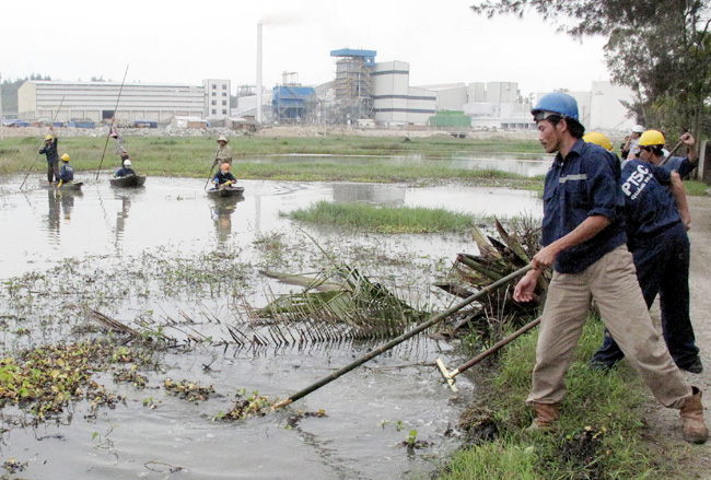 Authorities fail to tackle pollution woes