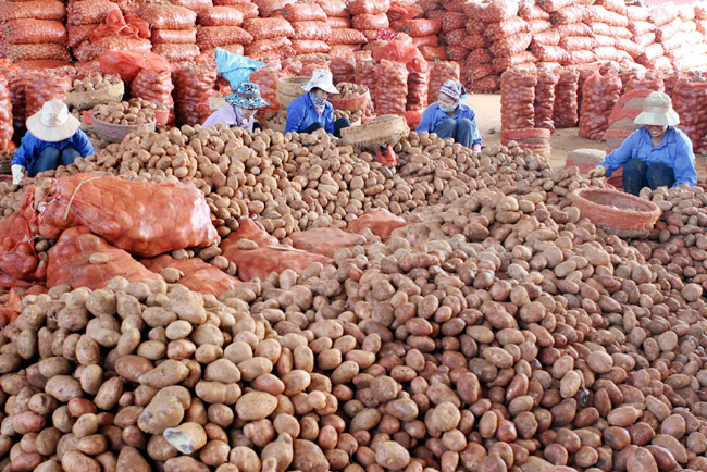 Local exporters urged to make most of eager overseas markets