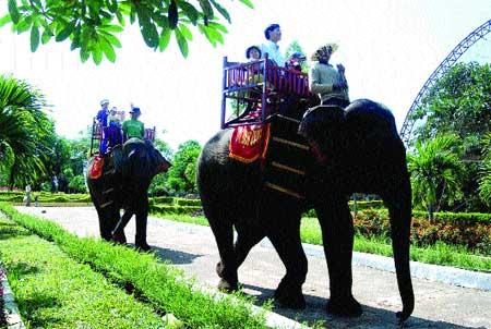 Tourists flock to verdant Tay Nguyen region