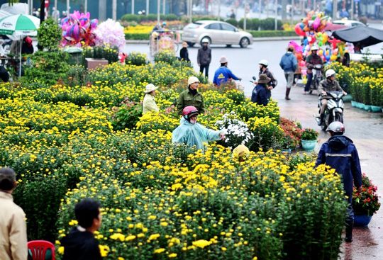 Hue locals shop flowers for Tet