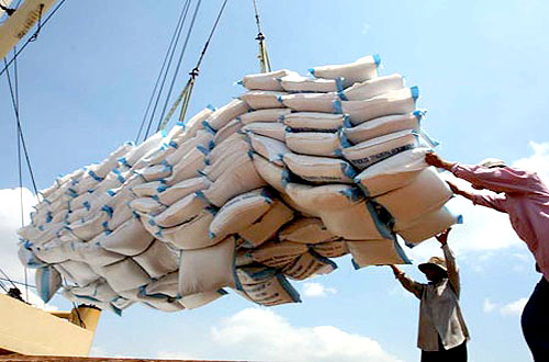 Vietnamese rice firms attend international conference