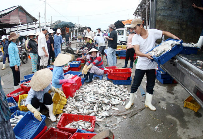 Fisheries centres to boost seafood quality