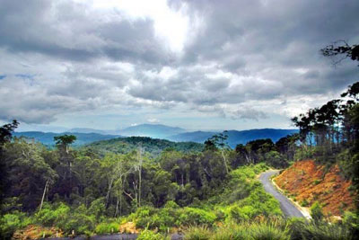 Khanh Hoa to develop Hon Ba nature reserve