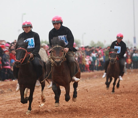 Hoofing it: The horse race featuring Mong ethnic jockeys drew many onlookers.