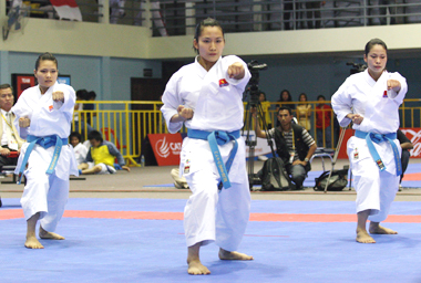 Martial artists face stiff challenge