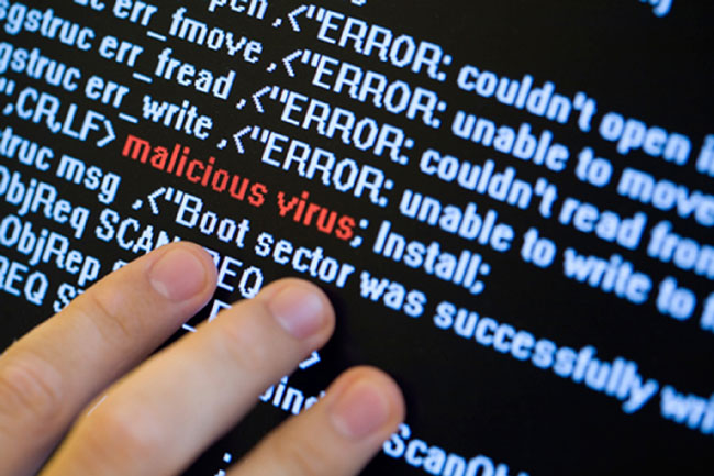 VN faces high risk of cyber attacks