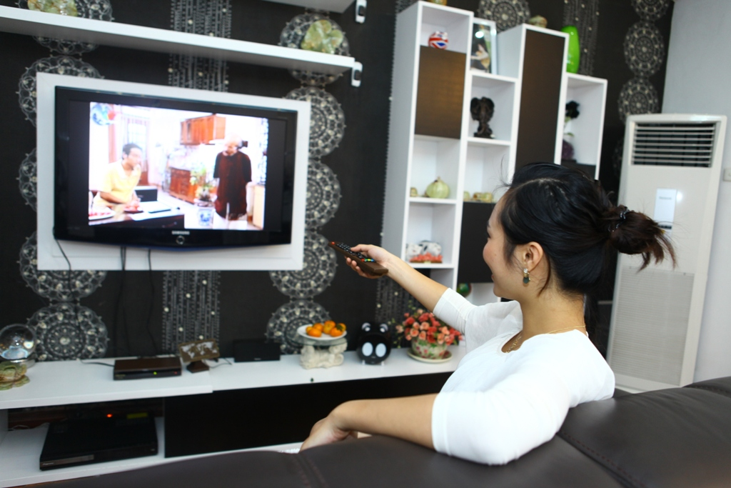 Experts call for better policies to tap potential of pay TV sector