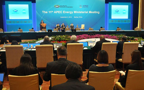 Viet Nam delegation attends APEC Energy Ministers Meeting