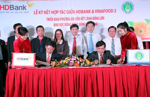 Deal gives Mekong rice farmers access to loans