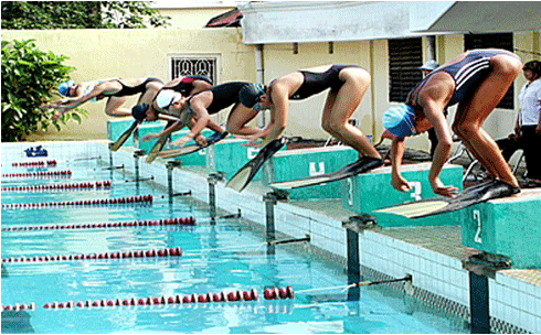 HCM City top natl swimming event