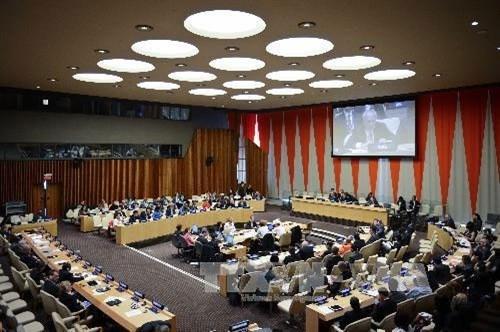 Viet Nam elected to UN Economic and Social Council