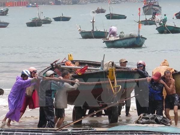 Coastal provinces brace as storm Mujigae nears