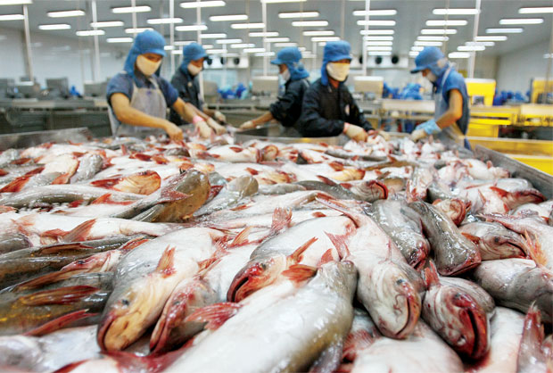 Tra fish exports to China grow