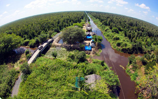 Forestry sector aims to boost productivity