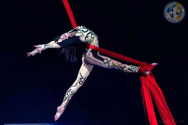 Circus troupe to launch VN tour