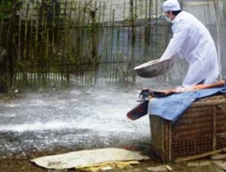 Thanh Hoa reports virulent bird flu outbreak