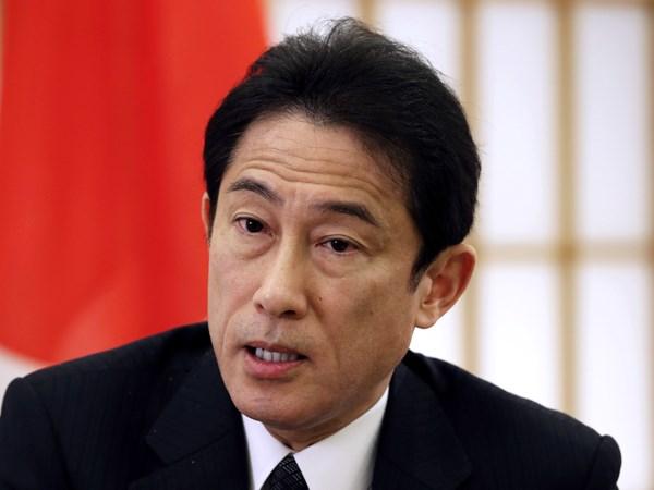 Viet Nam-Japan relations enjoy great progress