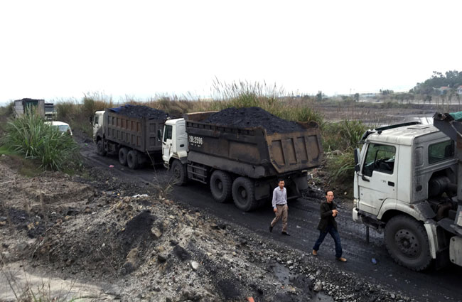 Origin of 700 tonnes of illegal coal yet to be determined