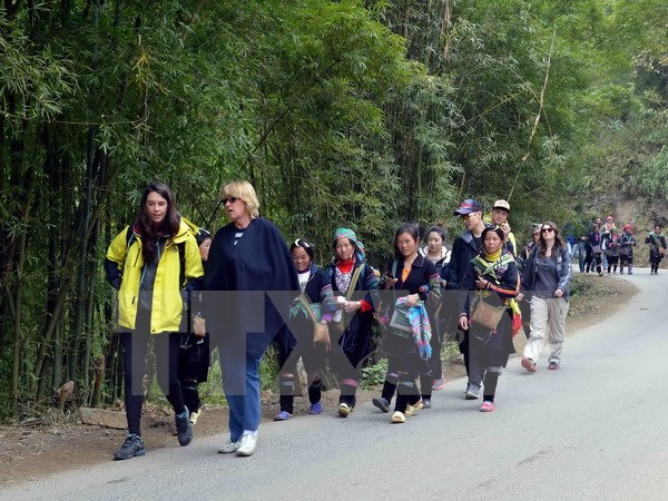 Viet Nam mulls reducing visa fees for foreigners
