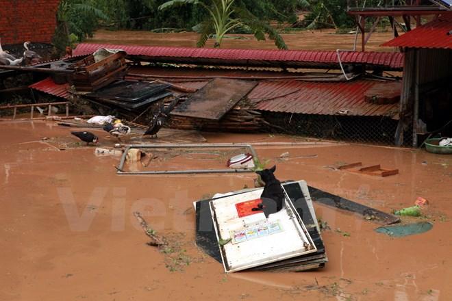 Deputy PM urges quicker storm relief work