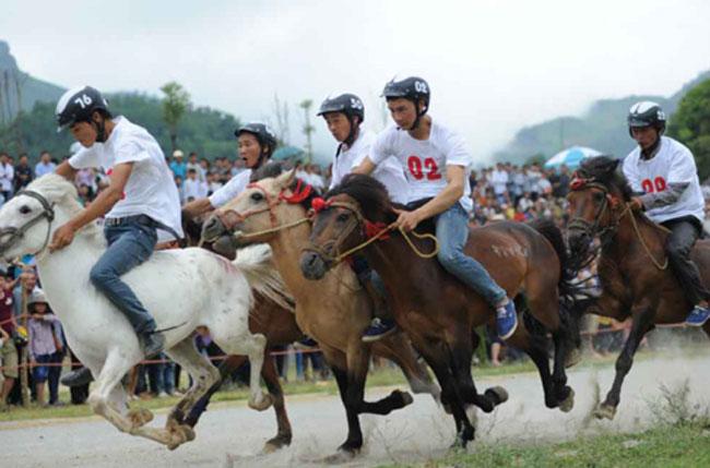 Mountain races