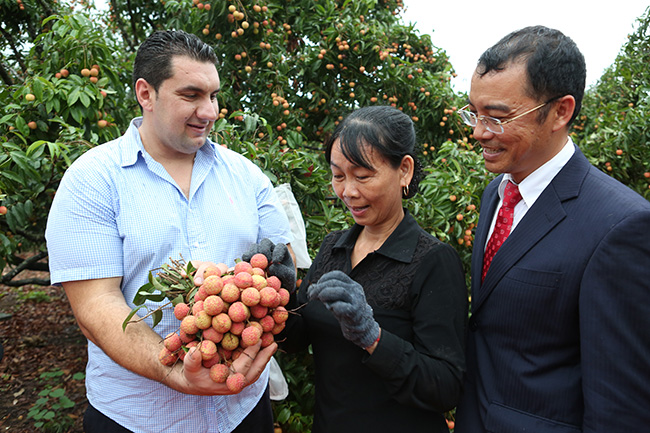 First lychee shipment heads for the US